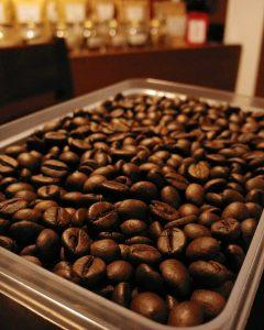 biji kopi robusta pilihan