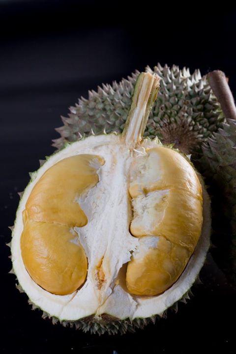 Manfaat Buah Durian Duri Hitam