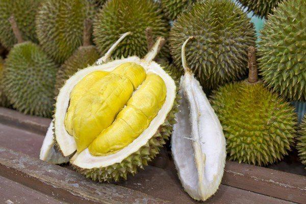 Manfaat Buah Durian Musang King Kaki Empat