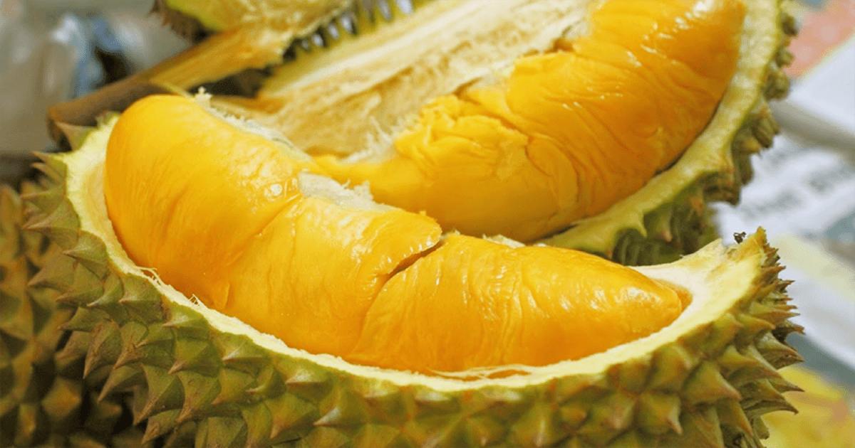 Manfaat Buah Durian D24
