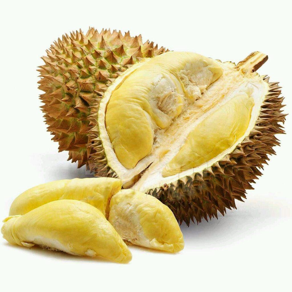 Manfaat Buah Durian Monthong Dongkelan